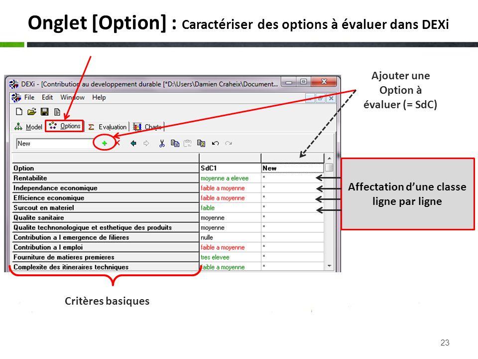 Onglet [Option] : Caractériser des options à évaluer dans DEXi
